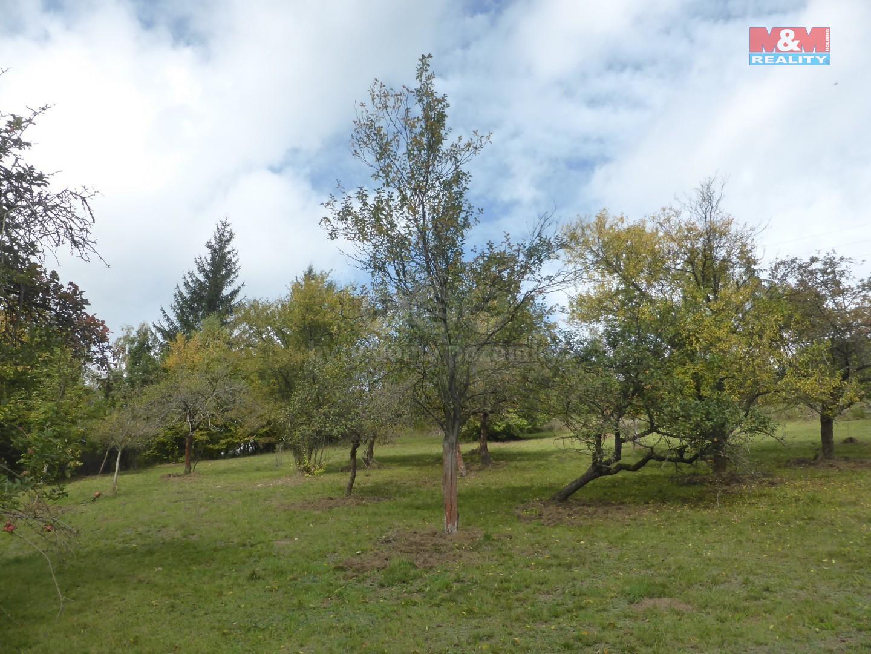Prodej zahrady, 3766 m2 a chaty, 18 m2, Hronov - Zbečník