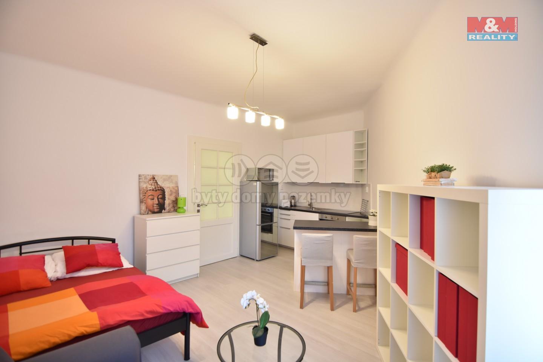 Pronájem bytu 1+kk, 30 m², Praha, ul. Slovinská
