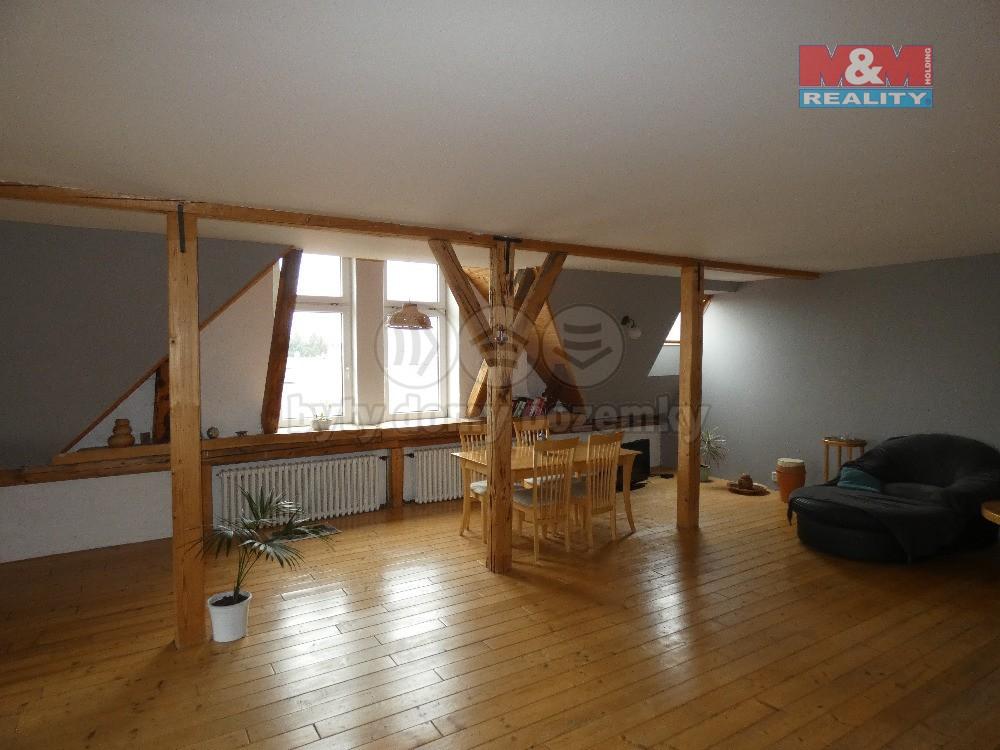 Prodej, byt 3+kk, 130 m2, OV, Opava, ul. Na Rybníčku