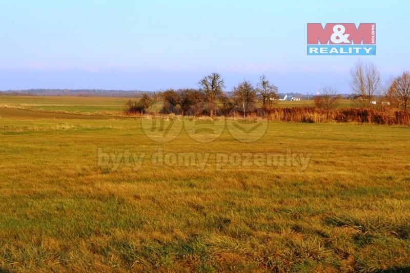 Prodej pozemku, 5663 m2, Borek