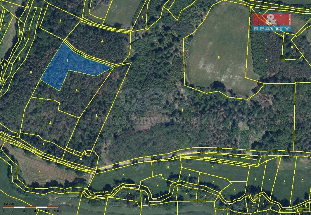 Prodej lesa, 10481 m², Vysoký Chlumec