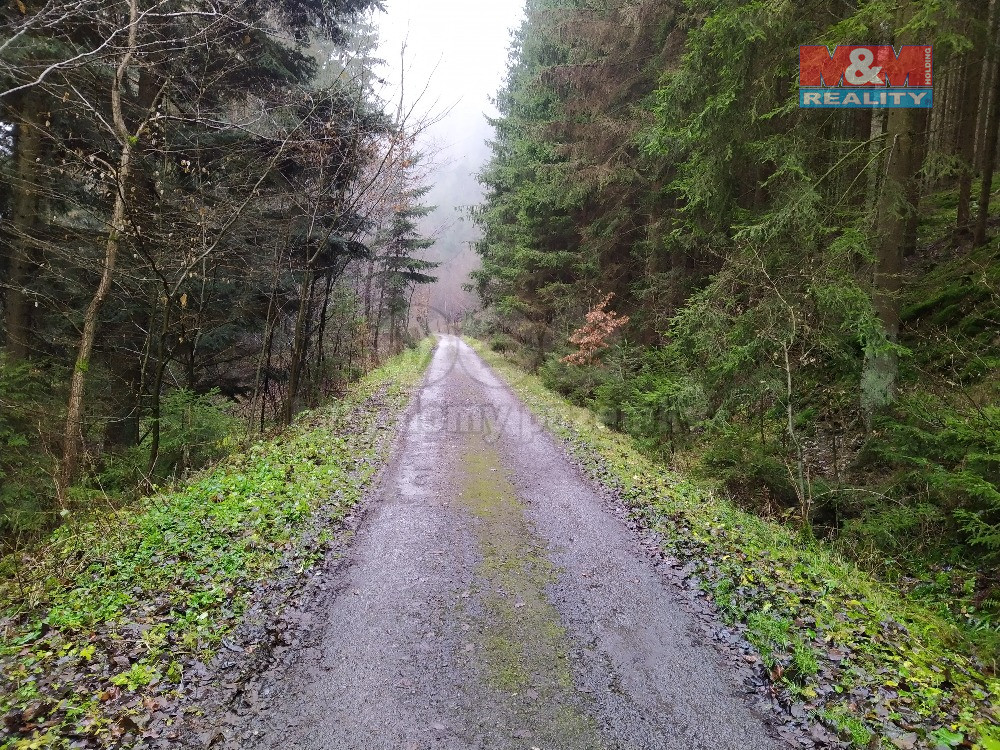 Prodej lesa, 7683 m², Svatoslav