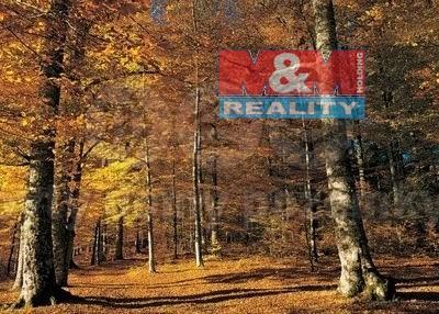 Prodej lesa, 1097 m², Jistebník