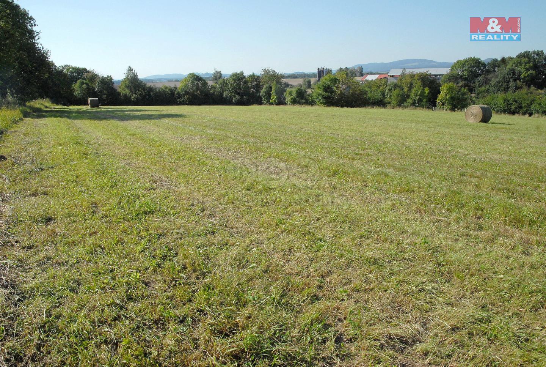 Prodej pozemku k bydlení, 12143 m², Lužany