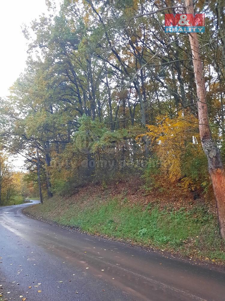 Prodej lesa, 11329 m², Měcholupy