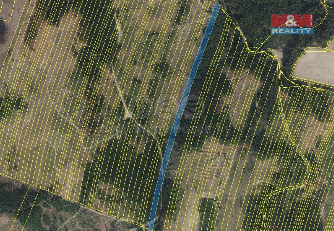 Prodej lesa, 28373 m², Nová Hradečná