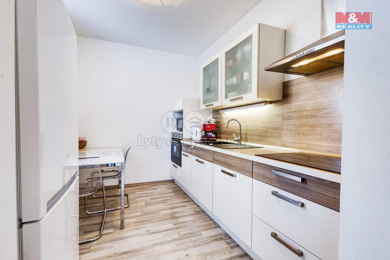 Pronájem bytu 2+kk, 64 m², Plzeň, ul. U Velkého rybníka