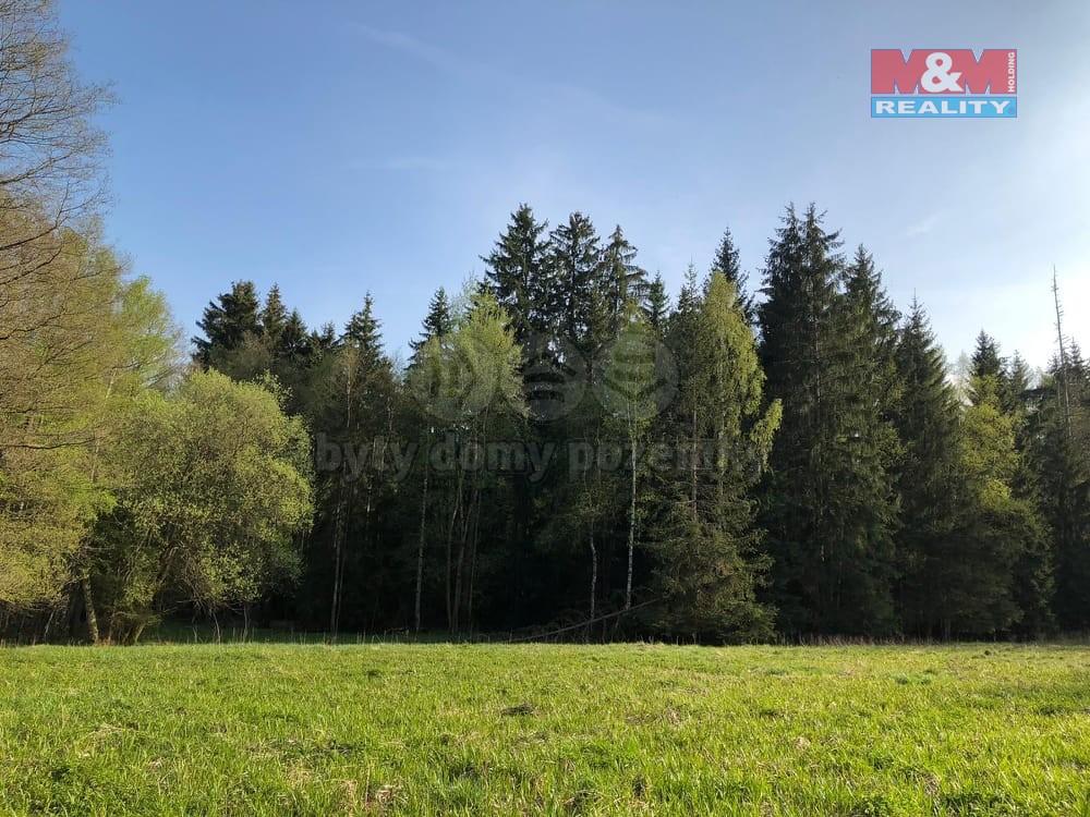 Prodej lesa, 31 ha, lesní obora, rybník, Aš