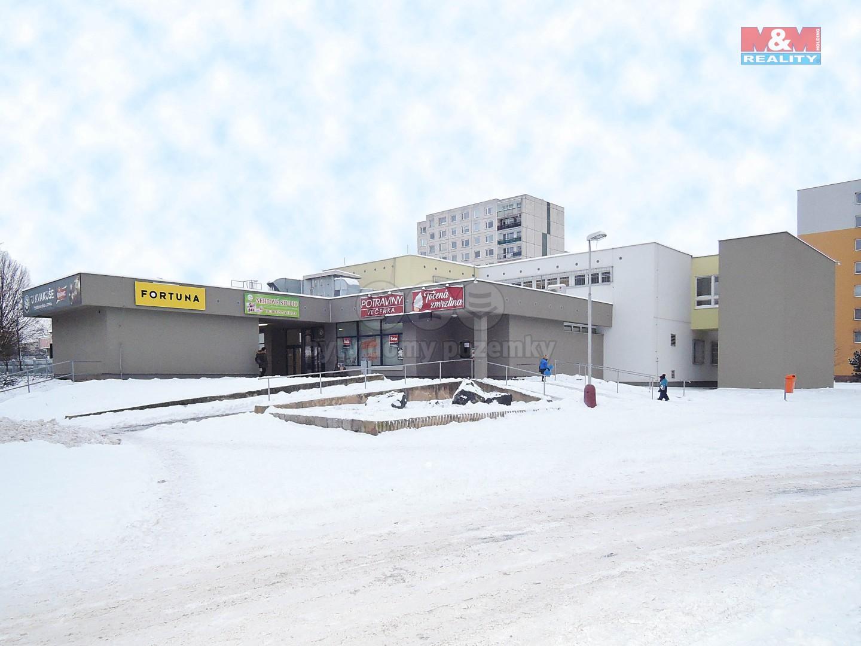 Pronájem obchod a služby, 110 m², Mladá Boleslav
