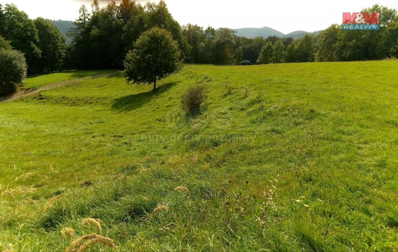 Prodej pastviny, 8383 m², Zábřeh