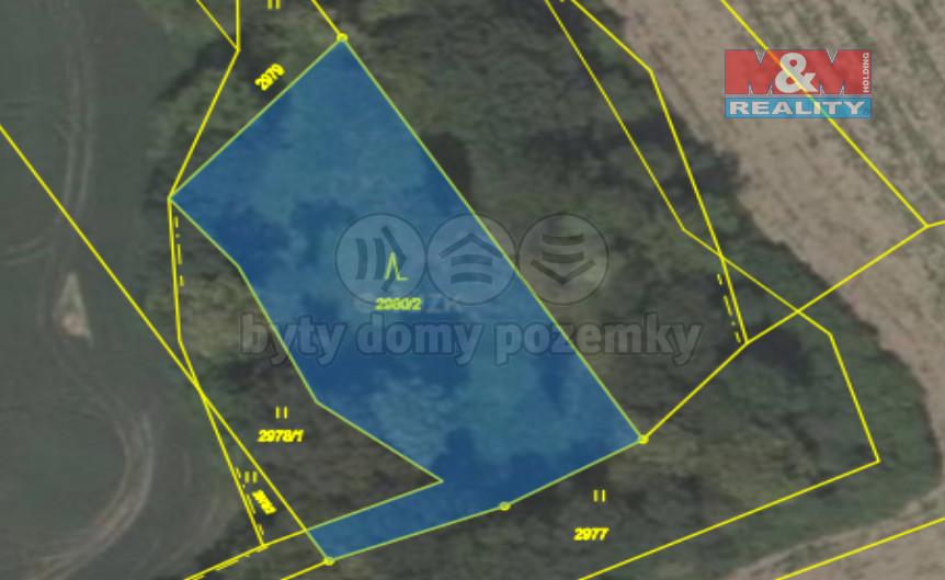 Prodej lesa, 4558 m², Kunín