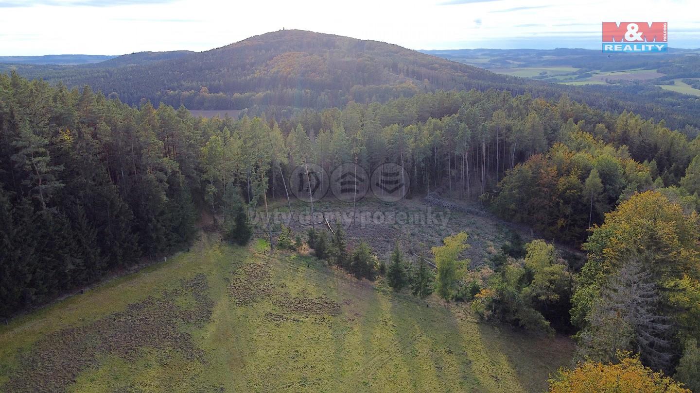 Prodej lesa, 22015 m², Pravonín