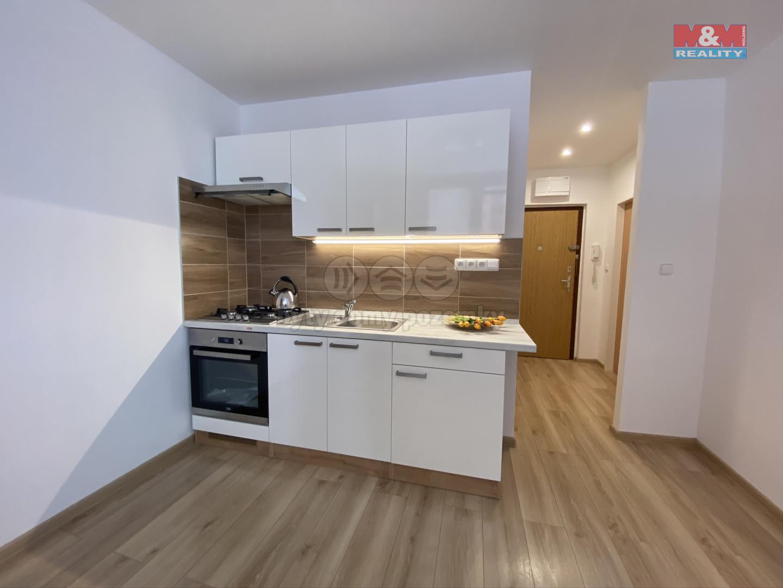 Pronájem bytu 1+1, 36 m², Ostrava, ul. Gen. Píky