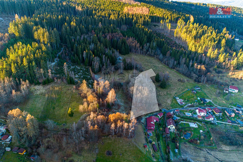 Prodej lesa, 3 373 m², Větřní, ul. V Lukách