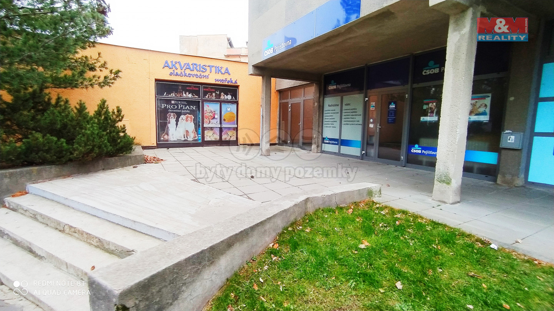 Pronájem nebytového prostoru, 124 m2, Město Albrechtice