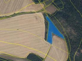 Prodej lesa, 11731 m², Pohledy