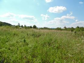 Prodej pozemku k bydlení, 1185 m², Čejetice