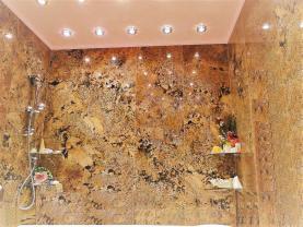 (Prodej, byt 2+1, 63 m2, OV, Karlovy Vary - Drahovice), foto 3/18