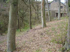 Prodej, les, 1608 m2, Svatý Jan pod Skalou