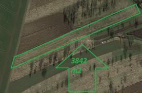 Prodej, zahrada, 3842 m2, Zborovice