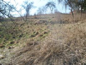 pohled od západu (Prodej, stavební parcela, 2595 m2, Volfartice), foto 2/12