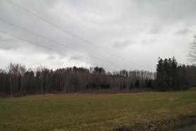 SAM_0115-2 (Prodej, pozemek, 4064 m2, Horní Domaslavice), foto 2/4