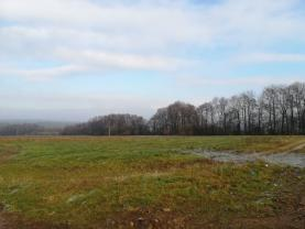 (Prodej, pozemky 9520 m2, Skuhrov - Hatě), foto 4/7
