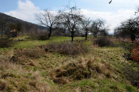 _DSC0256 (Prodej, pozemek, 913 m2, Horní Temenice, Šumperk), foto 2/3