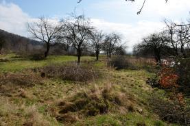 _DSC0253 (Prodej, pozemek, 913 m2, Horní Temenice, Šumperk), foto 3/3