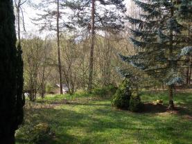 DSCF1831 (Prodej, chata 4+kk, 350 m2, Boříkovy - Kolinec), foto 2/19