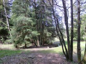 Prodej, les, 7921 m2, Jedlová u Staré Vody (okres Cheb)