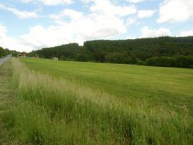 Prodej, louka a les, 31622 m2, Krňany