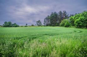 Prodej, stavební pozemek, 2381 m2, Vrchotovy Janovice