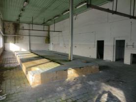 hala 3 (Prodej, pozemek, 57 200 m2 , Korozluky - Sedlec), foto 4/24