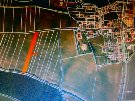 Prodej, orná půda, 3070 m2, Rynholec