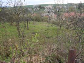 Prodej, zahrada, 1367 m², Zdounky - Divoky