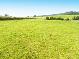 Prodej, pozemek 3000 m2, Zátor