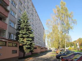 Pronájem, byt 1+kk, Pardubice - Polabiny