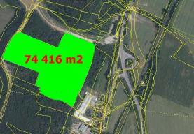 Woodland, 74416 m2, Mělník, Nelahozeves