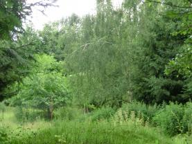 Pozemek Ruprechtice (Prodej, stavební parcela, 6725 m2, Liberec, Ruprechtice), foto 3/14