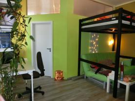 Prodej, byt 2+1, 42 m2, Karlovy Vary - Petřín