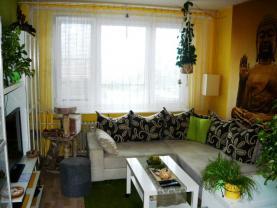 P1040604 (Prodej, byt 1+kk, 28 m2, Praha 4-Braník, Vavřenova), foto 2/10