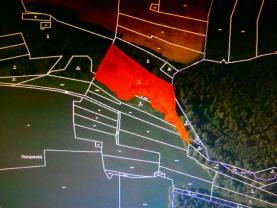Prodej, les, 5699 m2, Dědová