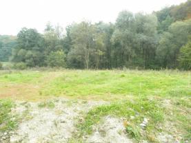 Prodej, pozemek, 2024 m2, Bělov