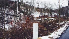 pozemek s el. přípojkou (Prodej, zahrada, 740 m2, Liberec), foto 2/5