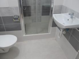 koupelna (Pronájem, byt 1+1, DV, 33 m2, Ústí n. Labem, ul. Plynárenská), foto 3/14