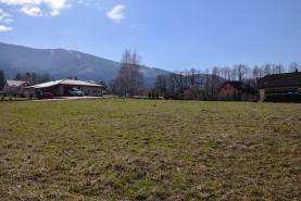 Prodej, pozemek, 5300 m2, Oldřichovice