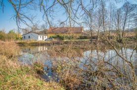 (Prodej, rybník, 4873 m2, Olbramovice - Křešice u Olbramovic), foto 3/7