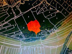 Prodej, les, 4481 m2, Drnovice u Valašských Klobouk