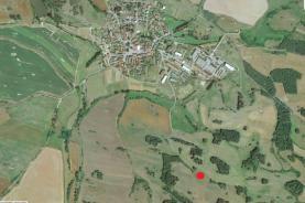 Prodej, lesní pozemek, 1540 m2, Svéradice